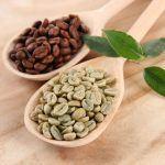 Caffè verde fa dimagrire? Dove trovarlo? Opinioni, proprietà e controindicazioni