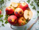 Pinova Val Venosta, la mela che conquista al primo sguardo